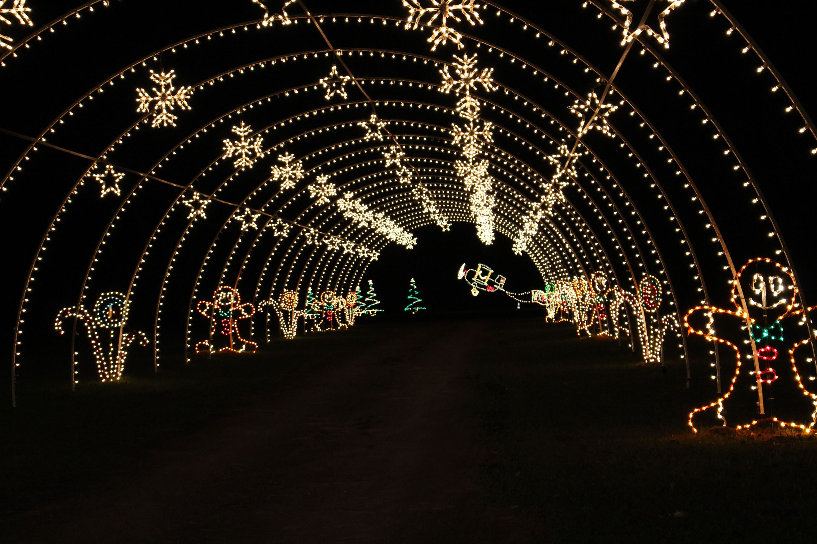 Christmas In The Park Tunnel of Lights